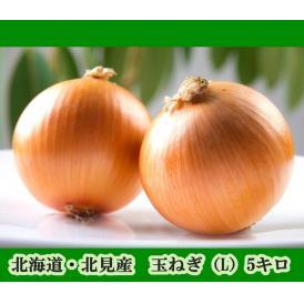 北海道・北見産 玉ねぎ(L)5キロ(たまねぎ・玉葱)
