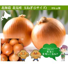 北海道・北見産 玉ねぎ(L)10キロ(たまねぎ・玉葱)