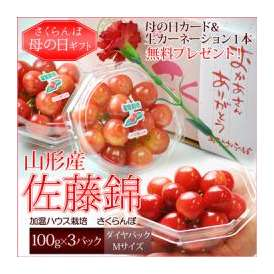 送料無料 [母の日ギフト]山形県産さくらんぼ 佐藤錦(100g×3P)ダイヤパック