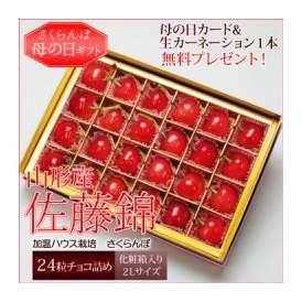 送料無料[母の日ギフト]山形県産さくらんぼ 佐藤錦(24粒/大粒/2Lサイズ)チョコ箱