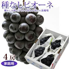 種なし葡萄 ピオーネ 4房 (1.5~2kg前後)