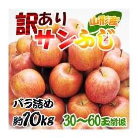 訳あり 山形県産 サンふじりんご約10kg(30~60玉前後)