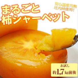 冷凍庄内柿 1.7kg 【まるごとシャーベット】