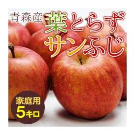 送料無料 葉とらず ふじ 【家庭用】約5kg(14~18個) ※青森産、直送、りんご、リンゴ、林檎、サンふじ