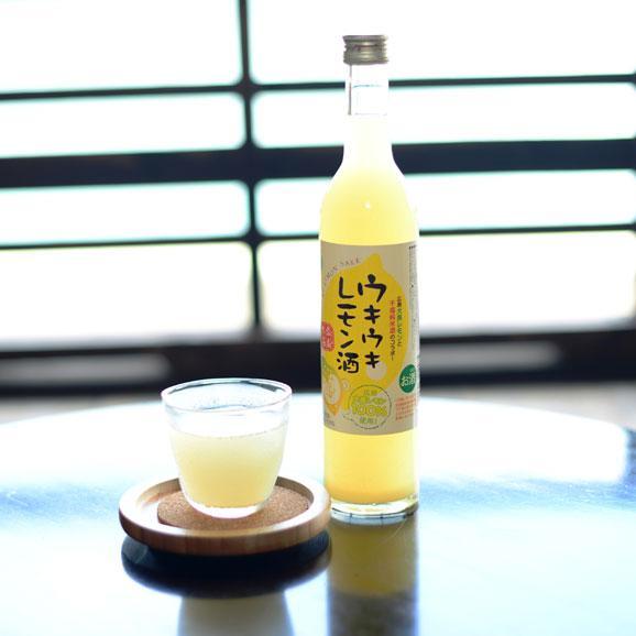 ウキウキレモン酒 500ml02