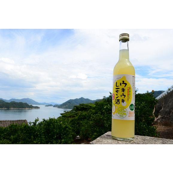 ウキウキレモン酒 500ml05