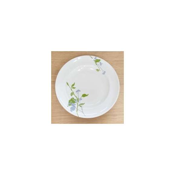 パスタ皿リム27.5cmグリーンブランチ洋食器業務用食器美濃焼