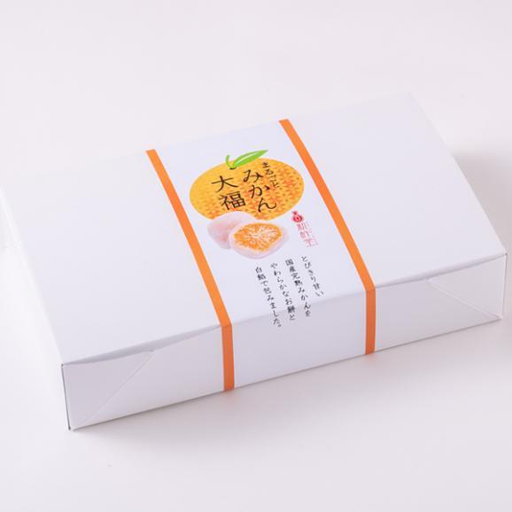 【送料無料】 まるごとみかん大福 6個 / 新杵堂 フルーツ大福 餅 こしあん スイーツ 和菓子 ギフト お土産04