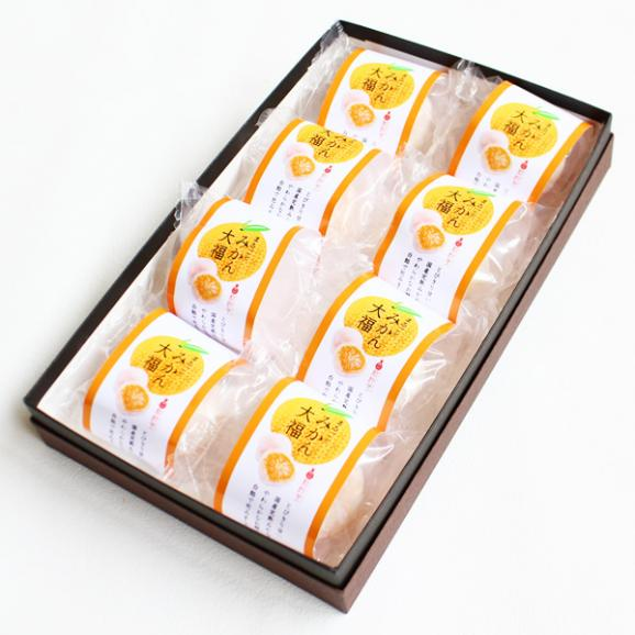 まるごとみかん大福 8個 新杵堂 フルーツ大福 餅 こしあん スイーツ 和菓子 ギフト お土産02
