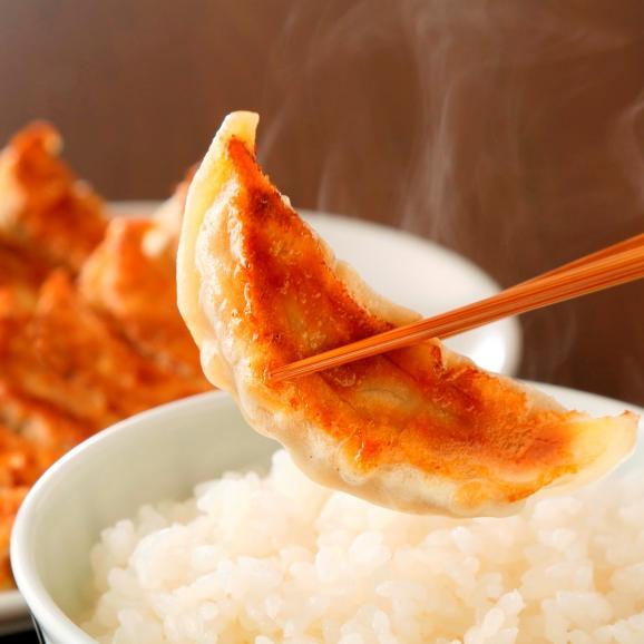 信念手造り餃子 肉野菜セット48個入り01