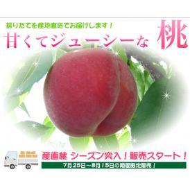 ご奉仕品!新太郎農園の桃(ご自宅用3kg)