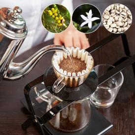 奄美群島徳之島/宮出珈琲園が栽培するコーヒー豆 ご注文が入り次第焙煎してお届けします。