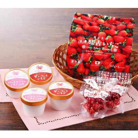 【送料込】冷凍勝占いちごと苺ジェラート4個セット02