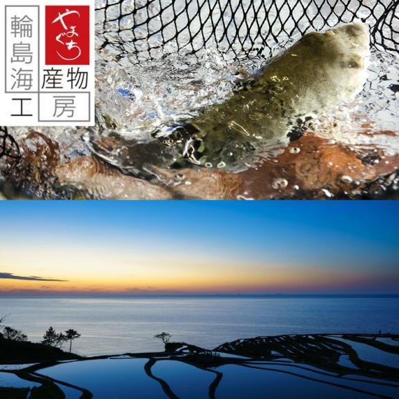 【送料込】真ふぐ鍋・真ふぐ茶漬けセット02