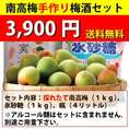 【送料無料・同梱不可】南高梅手作り梅酒セット