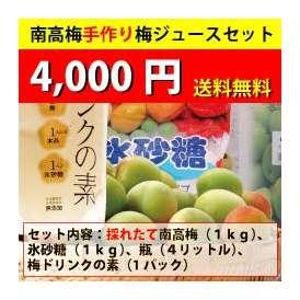 【送料無料・同梱不可】南高梅手作り梅ジュースセット