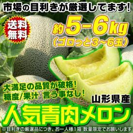 青肉メロン 約5~6kg(3~6玉) 山形県産 市場の目利き厳選 糖度・鮮度・果汁量が申し分ない 送料無料 旬発送 ワケあり