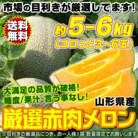赤肉メロン 約5~6kg(3~6玉) 山形県産 市場の目利き厳選 糖度・鮮度・果汁量が申し分ない 送料無料 旬発送 ワケあり