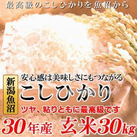 新米 こしひかり 玄米30キロ 平成30年産 魚沼産 送料無料 大人気銘柄の一等米! 米/ごはん/熨斗不可/精米不可/bc