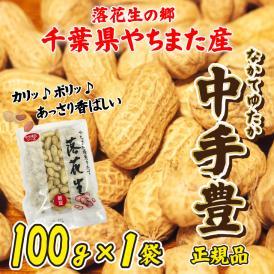落花生 やちまた産 八街 殻付き 中手豊 なかてゆたか 100g×1袋 正規品 千葉 ピーナッツ 全国送料無料