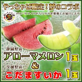 夢コラボ 静岡県産アローマメロン1玉&茨城県産こだますいか1玉 化粧箱  送料無料 フルーツ 贈答品