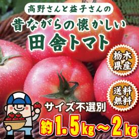 トマト 訳あり 高野さん益子さんの昔ながらの懐かしい田舎トマト 栃木県産 約1.5kgから2kg 送料無料