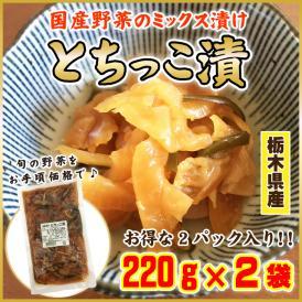 とちっこ漬  220g×2袋 お試し 国産野菜 大根 漬物 送料無料 メール便