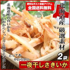 北海道産 真いか 一夜干しさきいか 45g×2袋 旨み凝縮 とっても柔らかく食べやすい おつまみ 珍味 全国送料無料