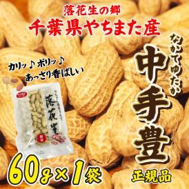 ポイント消化 送料無料 お試し平成29年産 新豆 節分 からつき落花生 千葉県やちまた産 中手豊品種 60g×1袋 ピーナッツ