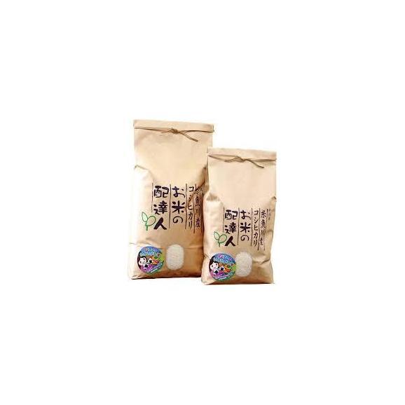 令和2年 新潟県糸魚川産コシヒカリ 特別栽培米 白米  5kg01
