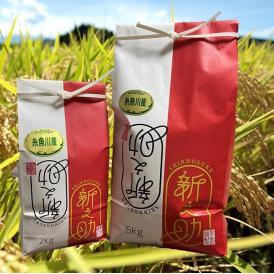 【新米】令和3年 新潟県糸魚川産新之助  白米  2kg
