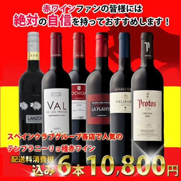 【送料無料】産地と造り手でここまで違う!テンプラニーリョ種飲み比べ赤ワイン6本セット スペインワイン01