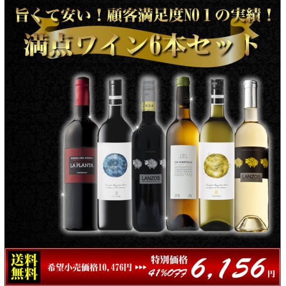 【送料無料】旨くて安い!顧客満足度NO1の実績!満点ワイン6本セット(赤白セット)01