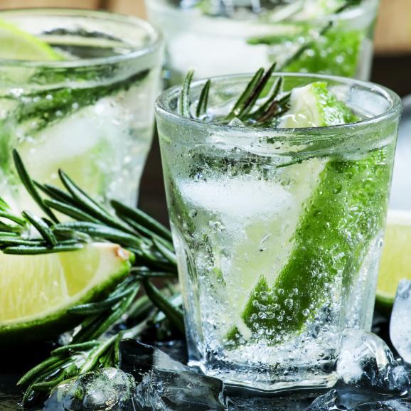 世界が注目?スペイン産「クラフトジン」ジン・ヴォルカニック Gin VOLCANIC03