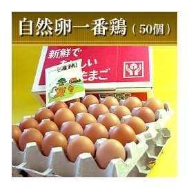 自然卵一番鶏「50個詰」