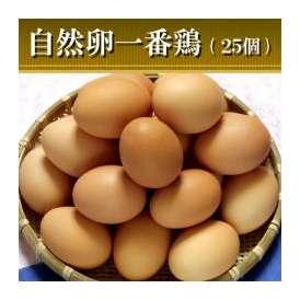 自然卵一番鶏「25個詰」