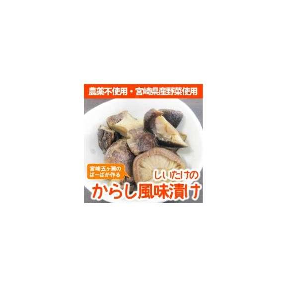 宮崎県産農薬不使用の新鮮野菜を使った『しいたけのからし風味漬け』【メール便・代引不可】【お届け目安:1~2週間程度】