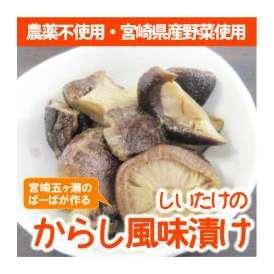 宮崎県産農薬不使用の新鮮野菜を使った『しいたけのからし風味漬け』3袋セット【メール便・代引不可】<お届け目安:1~2週間程度>