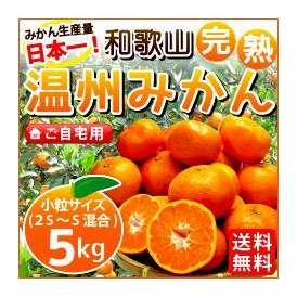 和歌山産 完熟温州みかん ご自宅用5kg 小粒サイズ(2S〜Sサイズ混合)約60〜80個 多少キズ、スレ、汚れあり