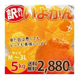 訳ありいよかん(伊予柑) 約5kg(M-3Lサイズ)【送料無料】