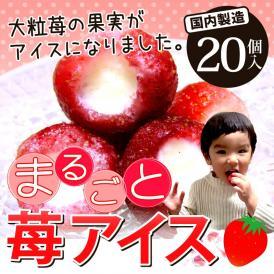 まるごと苺アイス 20粒 送料無料(お中元 お歳暮 ご贈答 贈り物 ギフト 苺 いちご イチゴアイス あいす 練乳アイス ミルク母の日 父の日 お誕生日 お土産)大粒の果実がまるご