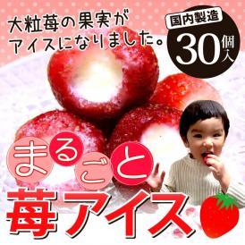 まるごと苺アイス 30粒 送料無料(バレンタイン 母の日 父の日 お誕生日 お土産 ご贈答 ギフト 苺 いちご イチゴ アイス あいす 練乳 ミルク)大粒の果実がまるごと