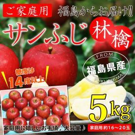 ご家庭用 福島県産 サンふじ林檎5kg(約16〜20玉)【送料無料】サンふじ ふじ 林檎 リンゴ りんご 蜜