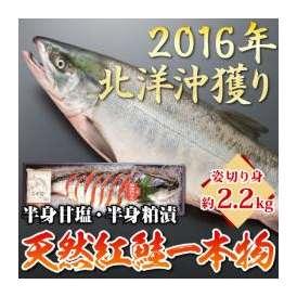 【2016年北洋沖獲り】北海道産天然紅鮭一本物 約2.2kg姿切り身(半身甘塩/半身粕漬け)化粧箱入り【送料無料】 お歳暮・贈り物受付中  ※紅さけ、鮭