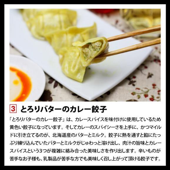 餃子 ぎょうざ ギョウザ まさごの無添加餃子5種類セット 60個(12個入×5種) 無添加うま味調味料使用 北海道 浦河04