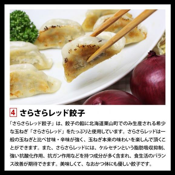 餃子 ぎょうざ ギョウザ まさごの無添加餃子5種類セット 60個(12個入×5種) 無添加うま味調味料使用 北海道 浦河05