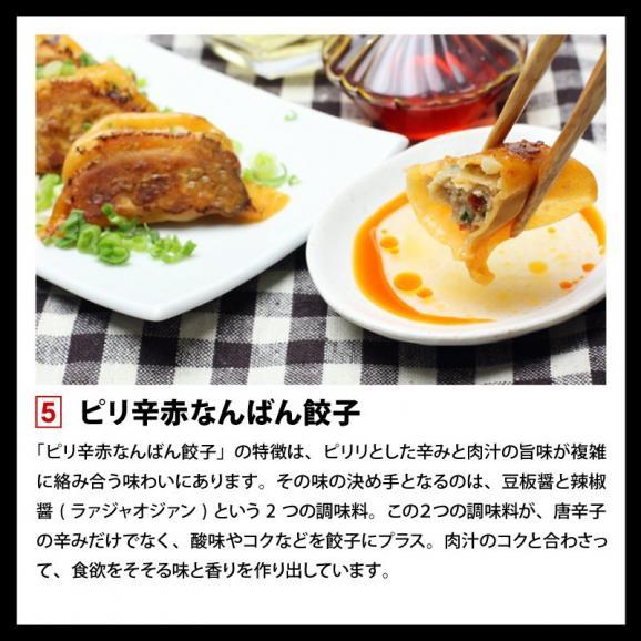 餃子 ぎょうざ ギョウザ まさごの無添加餃子5種類セット 60個(12個入×5種) 無添加うま味調味料使用 北海道 浦河06