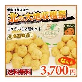 男爵芋・キタアカリ(各約5キロ)北の収穫2点セット