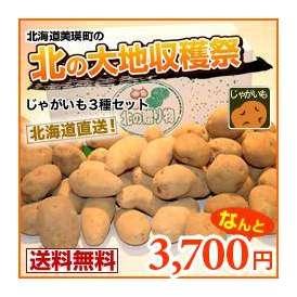 男爵芋・キタアカリ・メークイン(各約3キロ)北の収穫3点セット