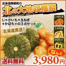 キタアカリ(約4キロ)・富良野産玉ねぎ(約4キロ)・栗カボチャ(2玉)北の収穫3点セット